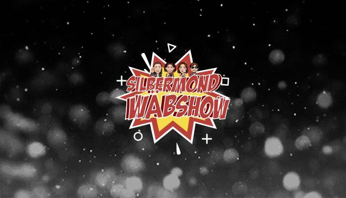 Silbermond Wäbshow
